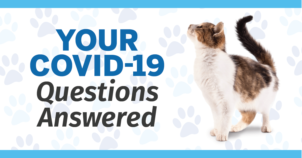 Your COVID-19 Questions Answered
